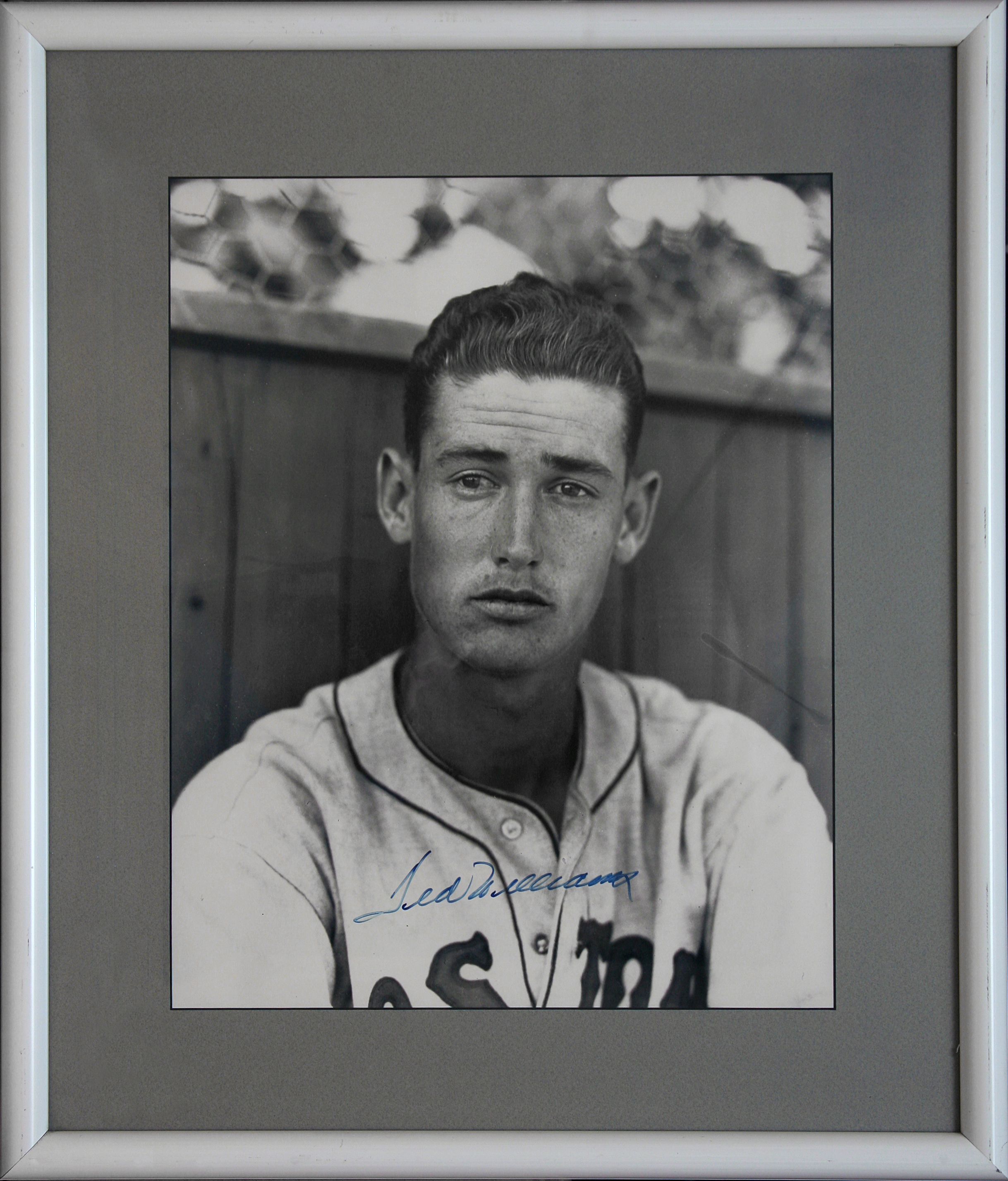Ted Williams copy